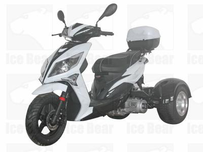 Trike Mad Dog Moped Wiring Diagram on